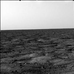 Mars from the Phoenix Lander